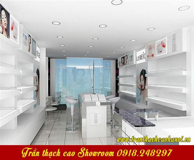 trang-tri-showroom-re-dep-voi-tran-thach-cao-06